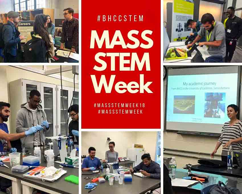 STEM Week collage